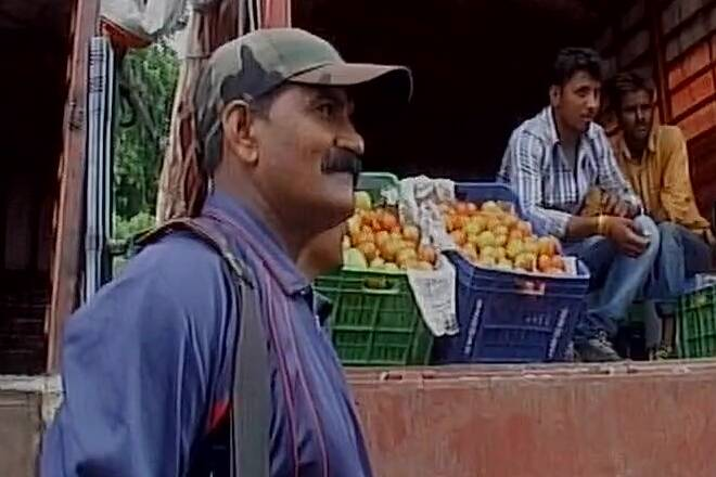 Amid rise in prices, armed guards hired to protect tomatoes in Indore