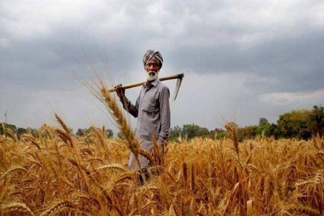 Claims under crop insurance scheme stand at Rs 16,000 crore for Kharif 2017